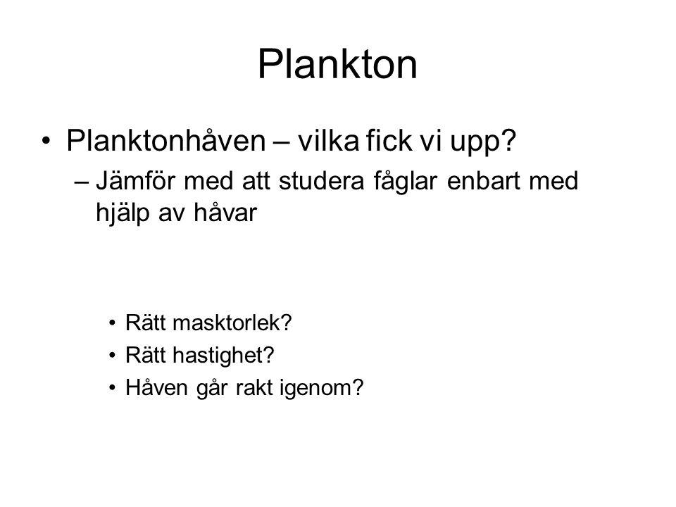 Plankton •Planktonhåven – vilka fick vi upp? –Jämför med att studera fåglar enbart med hjälp av håvar •Rätt masktorlek? •Rätt hastighet? •Håven går ra