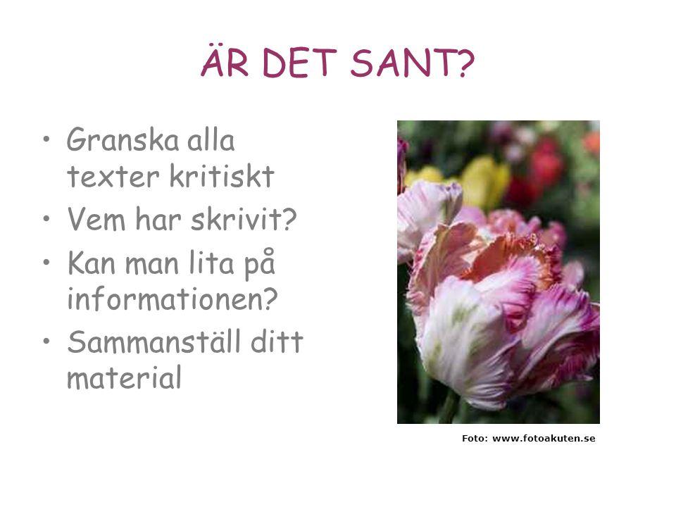 ÄR DET SANT? •Granska alla texter kritiskt •Vem har skrivit? •Kan man lita på informationen? •Sammanställ ditt material Foto: www.fotoakuten.se