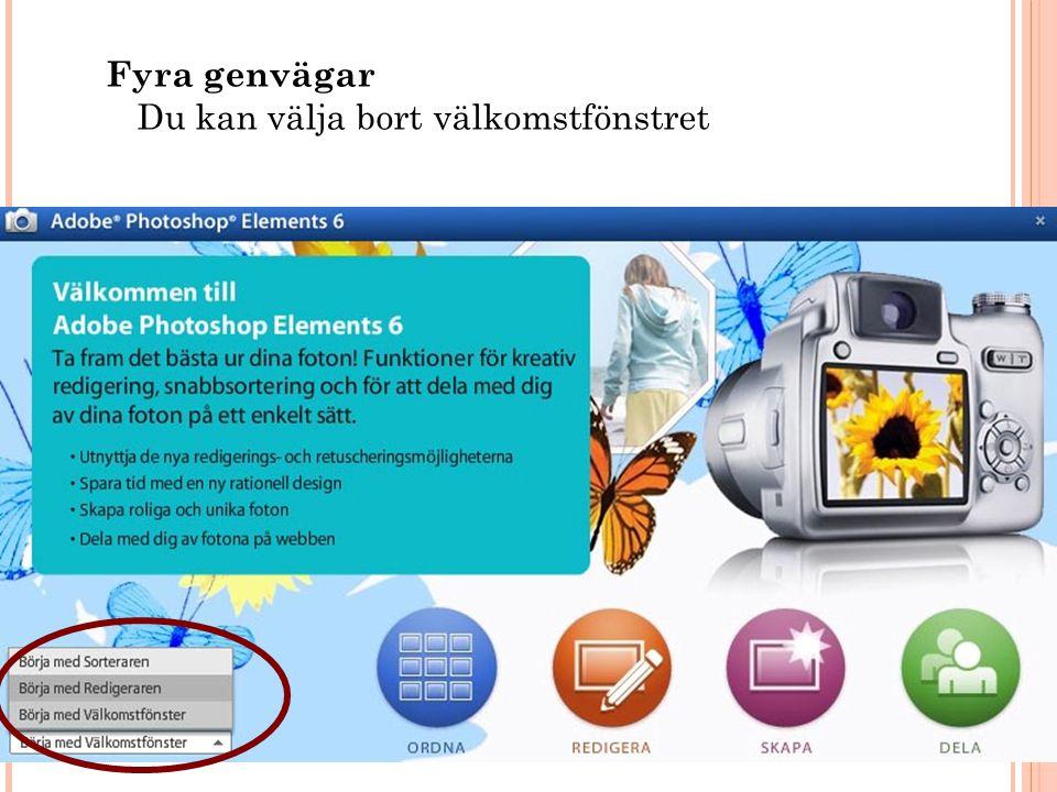 Klippgrupper 34 Copyright, www.hakimdata.se, Mahmud Al Hakim, mahmud@hakimdata.se, 2008 Lager – Gruppera med tidigare OBS: Dra ned bokstav lagret så att den ligger under bild lagret.