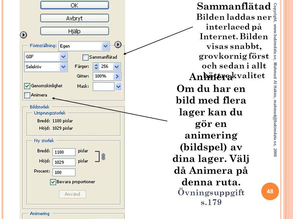 48 Copyright, www.hakimdata.se, Mahmud Al Hakim, mahmud@hakimdata.se, 2008 Sammanflätad Bilden laddas ner interlaced på Internet. Bilden visas snabbt,
