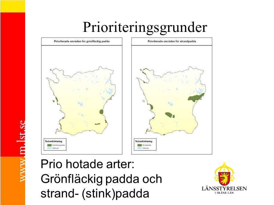 Prio hotade arter: Grönfläckig padda och strand- (stink)padda Prioriteringsgrunder