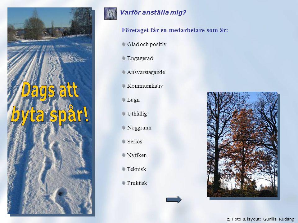 © Foto & layout: Gunilla Rudäng Varför anställa mig.