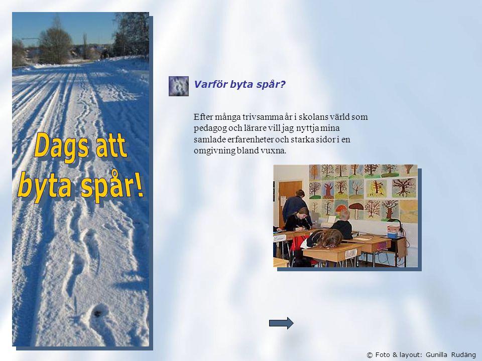 © Foto & layout: Gunilla Rudäng Varför byta spår.