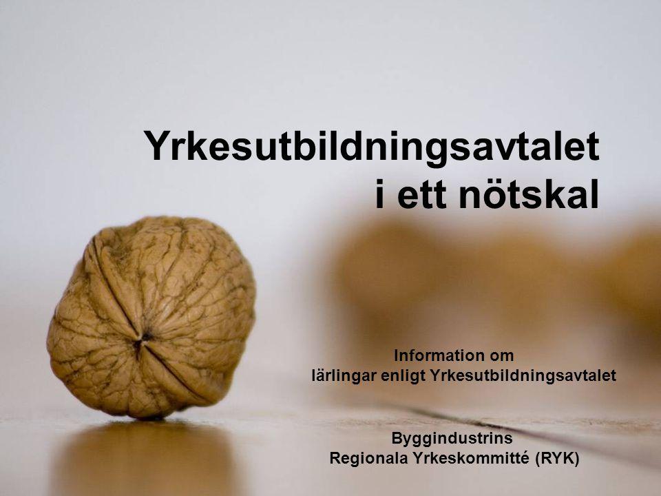 Information om lärlingar enligt Yrkesutbildningsavtalet Byggindustrins Regionala Yrkeskommitté (RYK) Yrkesutbildningsavtalet i ett nötskal