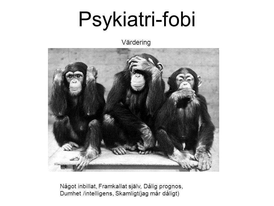 Psykiatri-fobi Värdering Något inbillat, Framkallat själv, Dålig prognos, Dumhet /intelligens, Skamligt(jag mår dåligt)