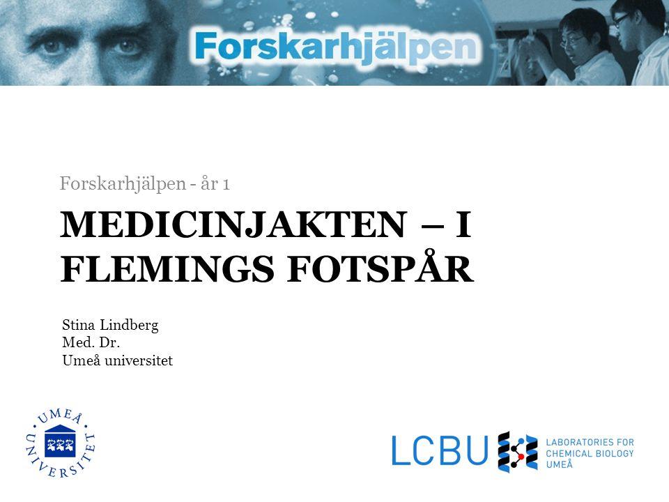 MEDICINJAKTEN – I FLEMINGS FOTSPÅR Forskarhjälpen - år 1 Stina Lindberg Med. Dr. Umeå universitet