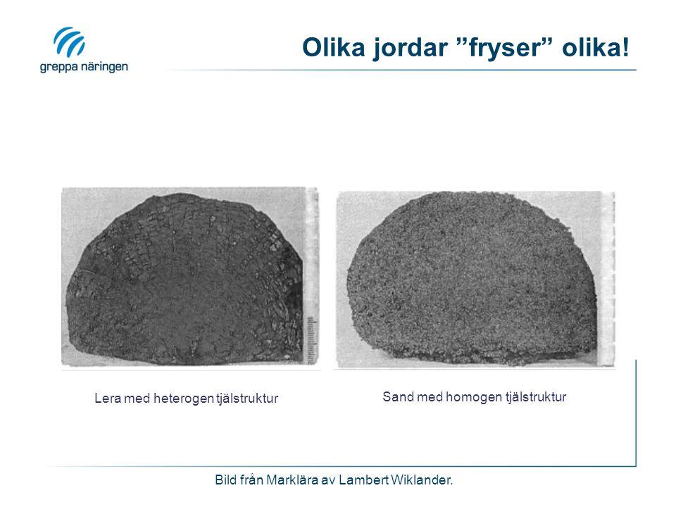 """Olika jordar """"fryser"""" olika! Lera med heterogen tjälstruktur Sand med homogen tjälstruktur Bild från Marklära av Lambert Wiklander."""