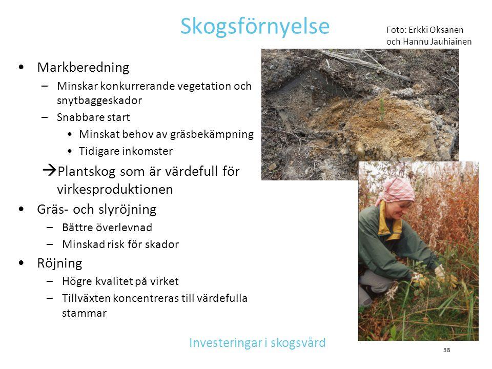 Skogsförnyelse •Markberedning –Minskar konkurrerande vegetation och snytbaggeskador –Snabbare start •Minskat behov av gräsbekämpning •Tidigare inkomst