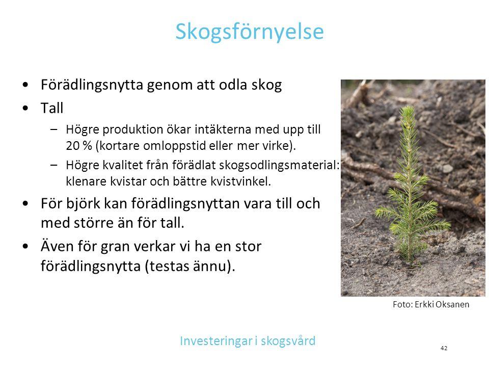 Skogsförnyelse •Förädlingsnytta genom att odla skog •Tall –Högre produktion ökar intäkterna med upp till 20 % (kortare omloppstid eller mer virke). –H