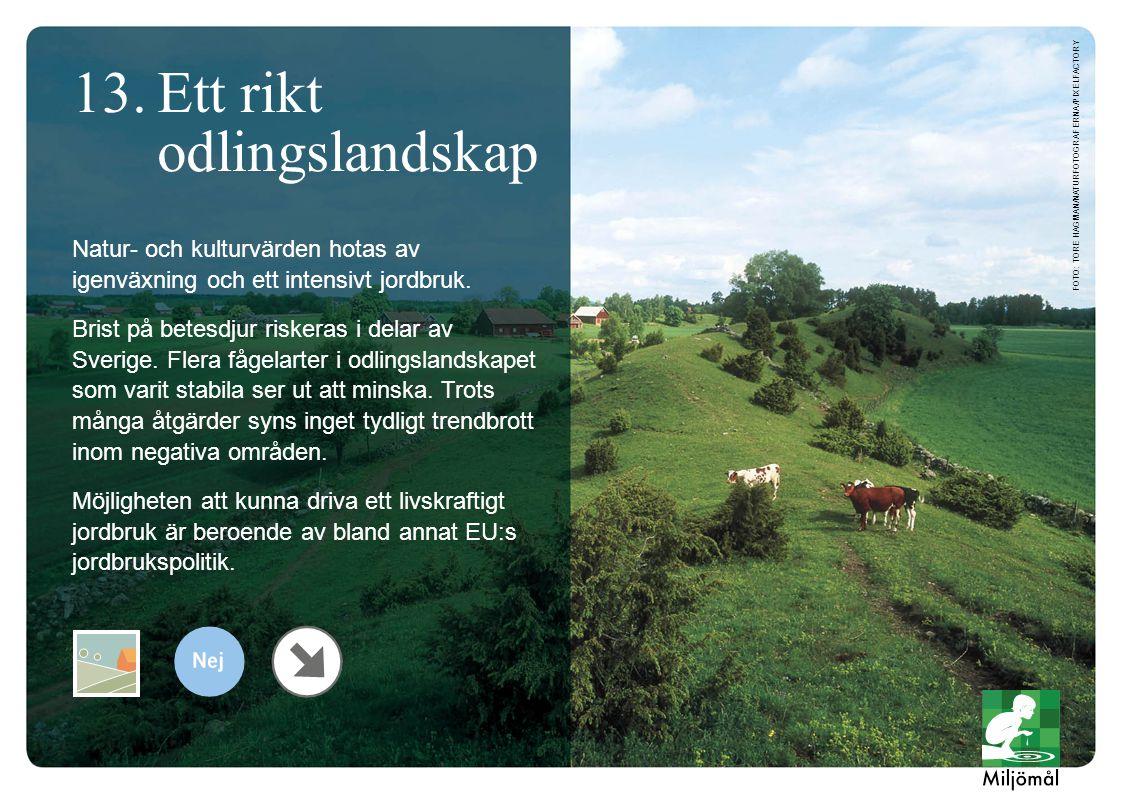 Natur- och kulturvärden hotas av igenväxning och ett intensivt jordbruk. Brist på betesdjur riskeras i delar av Sverige. Flera fågelarter i odlingslan