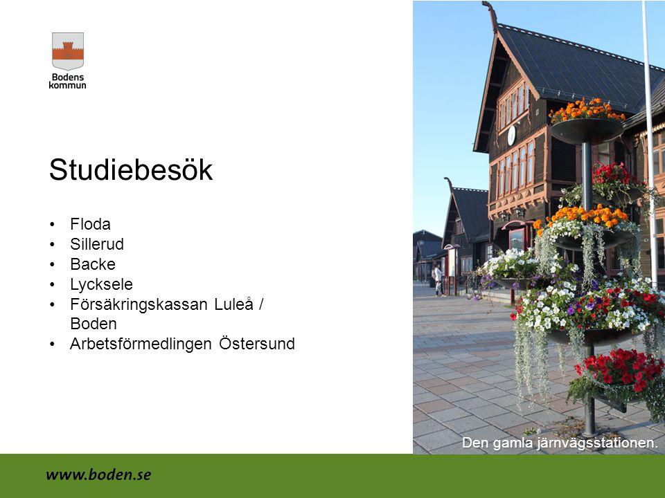 Studiebesök •Floda •Sillerud •Backe •Lycksele •Försäkringskassan Luleå / Boden •Arbetsförmedlingen Östersund Den gamla järnvägsstationen.
