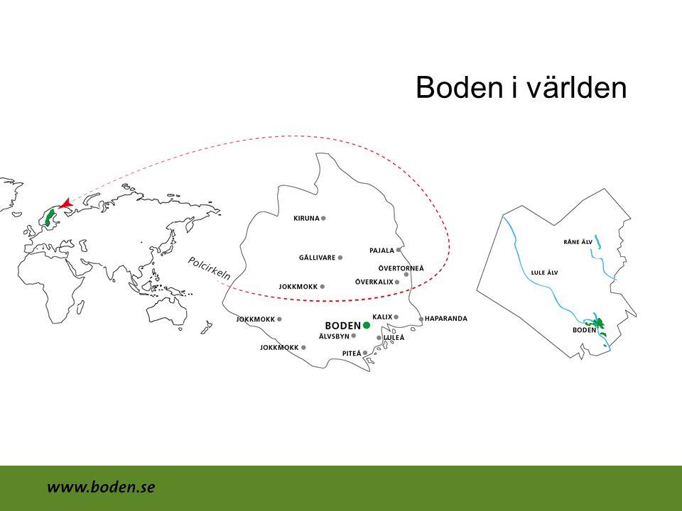 Överlevnad avtal •Turistbyrå •Bodens Kommun •Norrbottens läns landsting Luleå tekniska universitet •Arbetsförmedlingen •Försäkringskassan •Kyrkan •Posten