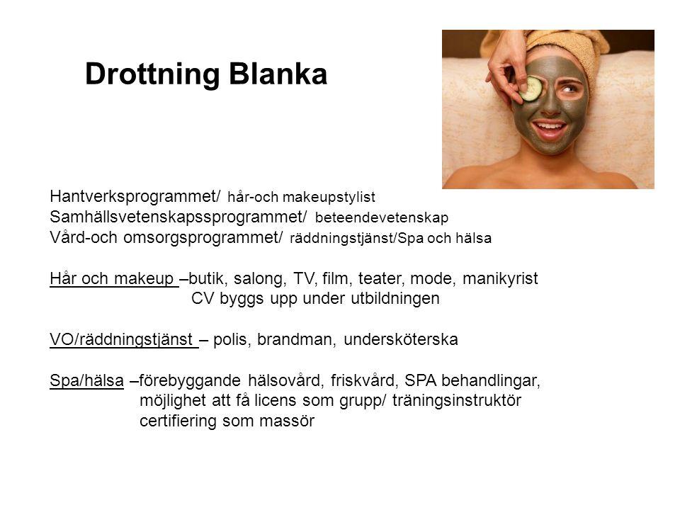 Drottning Blanka Hantverksprogrammet/ hår-och makeupstylist Samhällsvetenskapssprogrammet/ beteendevetenskap Vård-och omsorgsprogrammet/ räddningstjän