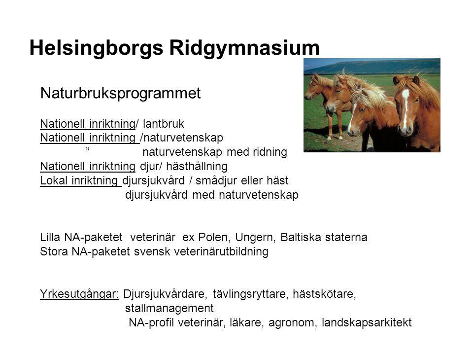 """Helsingborgs Ridgymnasium Naturbruksprogrammet Nationell inriktning/ lantbruk Nationell inriktning /naturvetenskap """" naturvetenskap med ridning Nation"""
