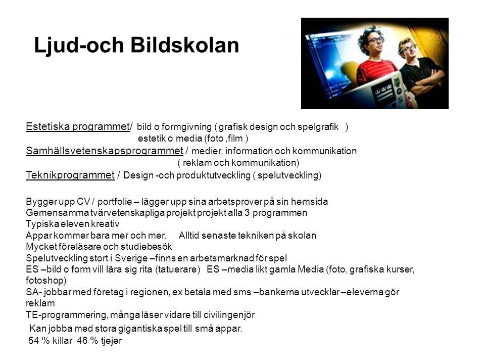 Ljud-och Bildskolan Estetiska programmet/ bild o formgivning ( grafisk design och spelgrafik ) estetik o media (foto,film ) Samhällsvetenskapsprogramm