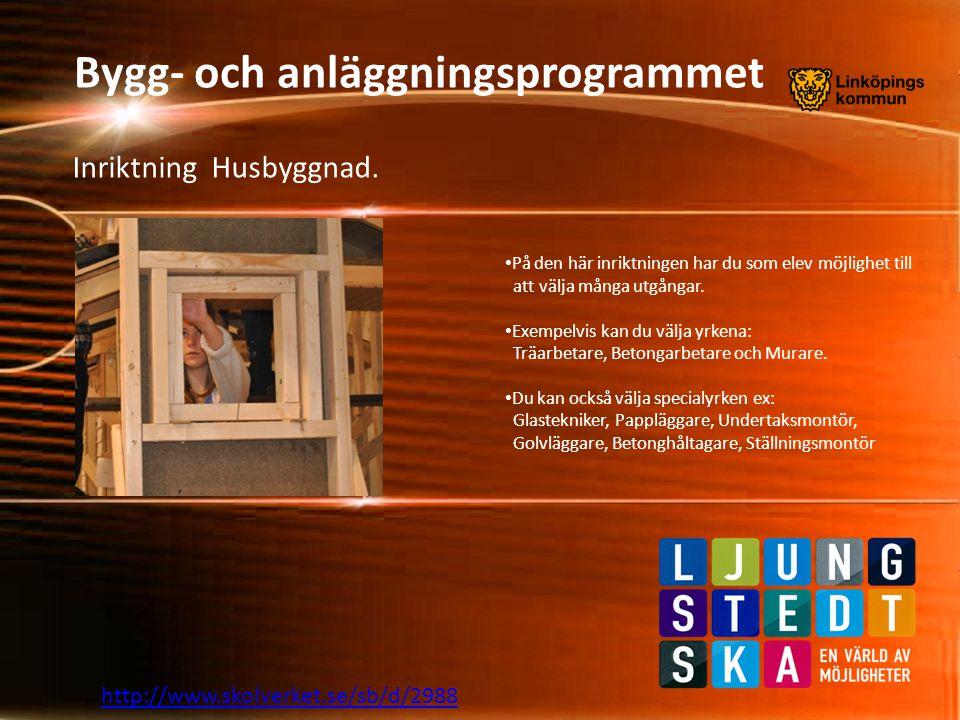 Bygg- och anläggningsprogrammet http://www.skolverket.se/sb/d/2988 Vi ser fram emot att möta, kanske just dig här till hösten.