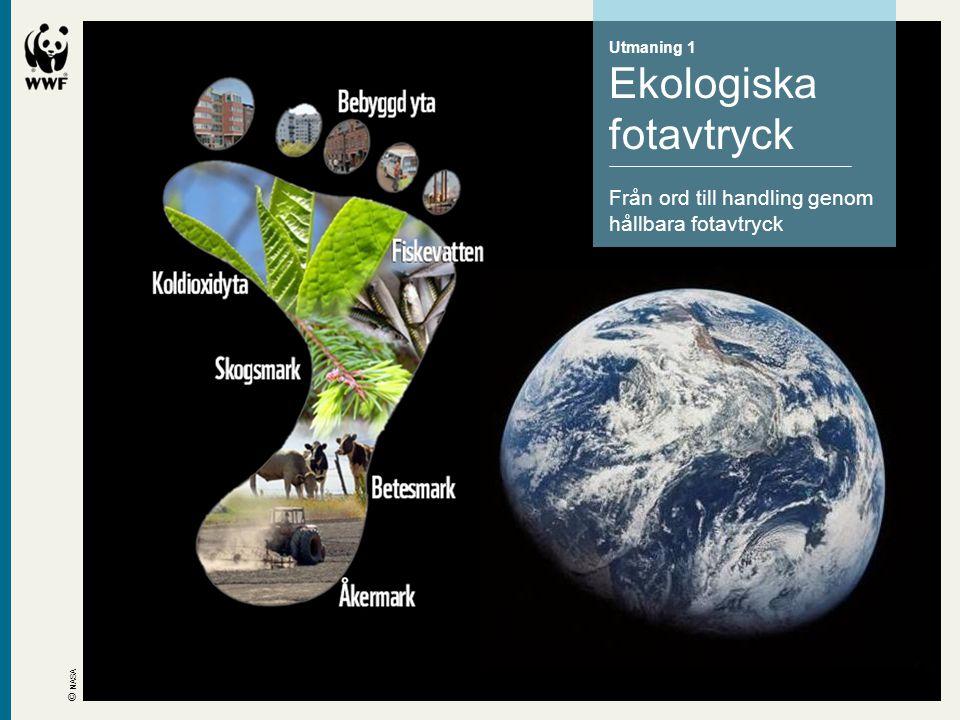 Utmaning 1 Ekologiska fotavtryck Från ord till handling genom hållbara fotavtryck © NASA