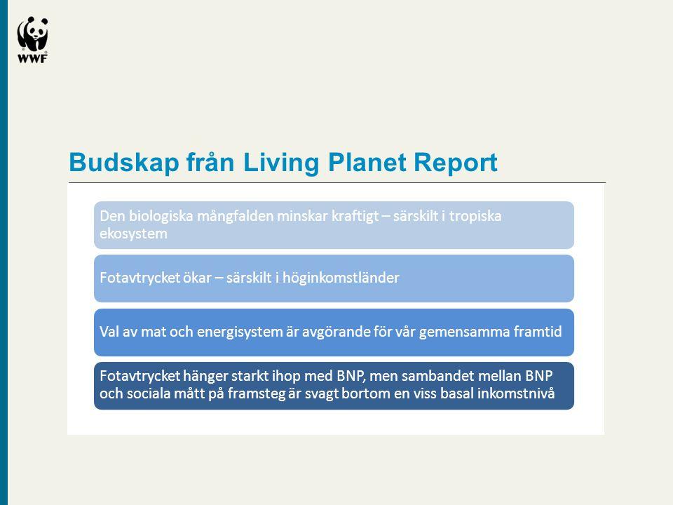 Budskap från Living Planet Report Den biologiska mångfalden minskar kraftigt – särskilt i tropiska ekosystem Fotavtrycket ökar – särskilt i höginkomst