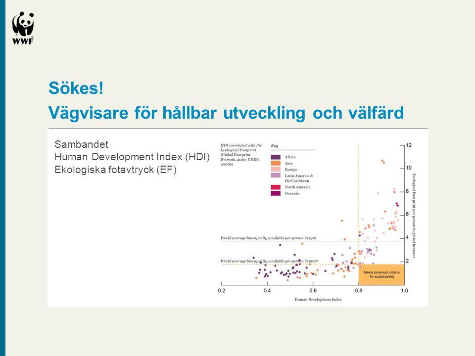 Sökes! Vägvisare för hållbar utveckling och välfärd Sambandet Human Development Index (HDI) Ekologiska fotavtryck (EF)