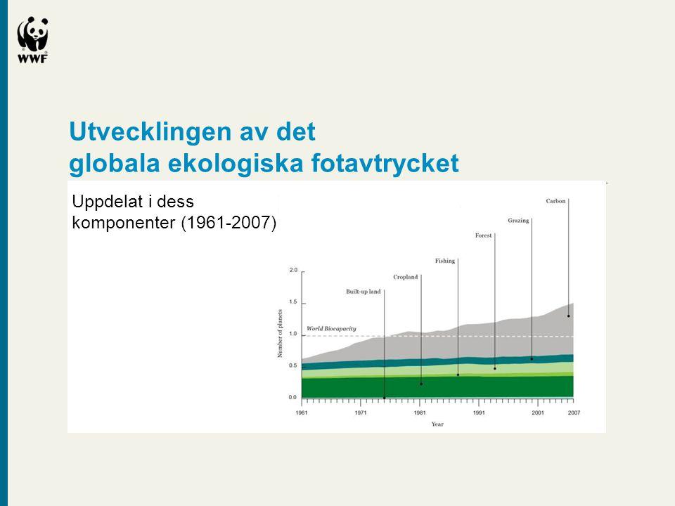 Utvecklingen av det globala ekologiska fotavtrycket Uppdelat i dess komponenter (1961-2007)