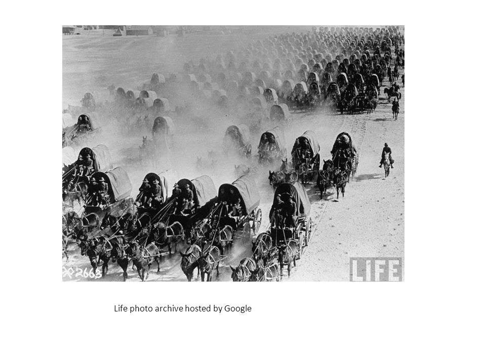 American troops in mule drawn wagons during World War I. Life photo archive hosted by Google