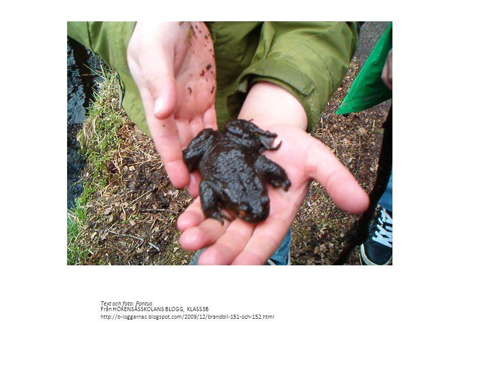 Text och foto: Pontus Från HÖKENSÅSSKOLANS BLOGG, KLASS3B http://b-loggarnas.blogspot.com/2009/12/brandbil-151-och-152.html