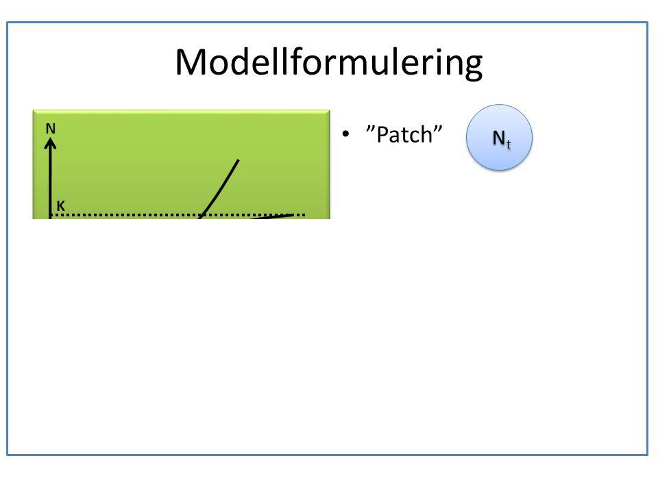 """Modellformulering • En ek är boplats för en population läderbaggar. • Läderbaggar föds och dör. • Hur många läderbaggar får plats i en ek? • """"Patch"""" •"""