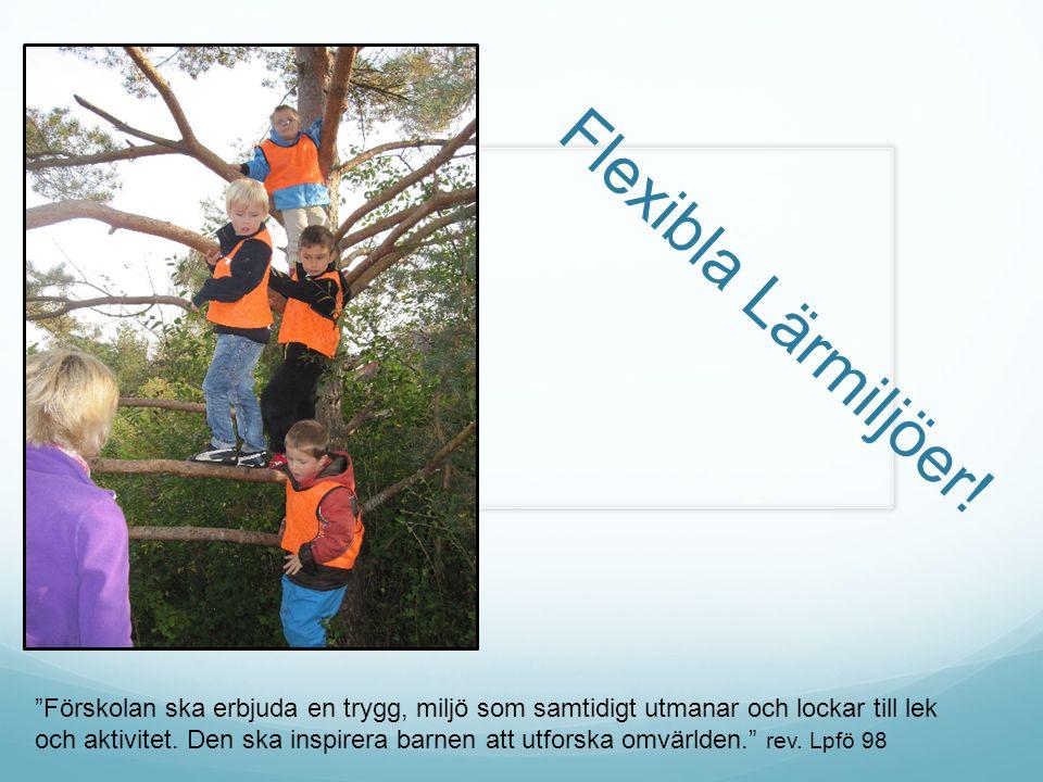 """Flexibla Lärmiljöer! """"Förskolan ska erbjuda en trygg, miljö som samtidigt utmanar och lockar till lek och aktivitet. Den ska inspirera barnen att utfo"""