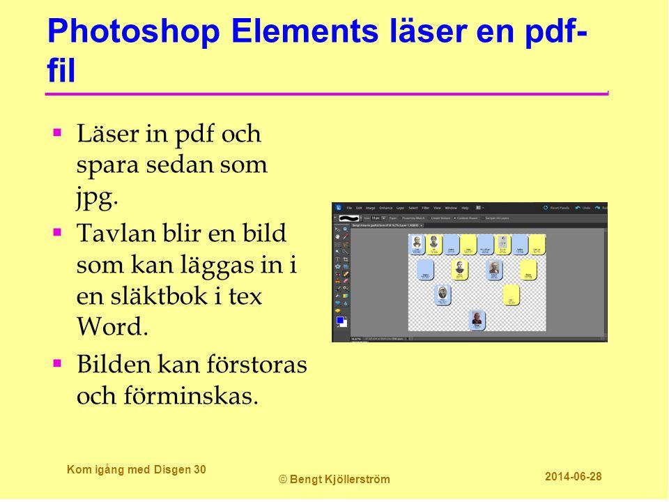 Photoshop Elements läser en pdf- fil  Läser in pdf och spara sedan som jpg.  Tavlan blir en bild som kan läggas in i en släktbok i tex Word.  Bilde