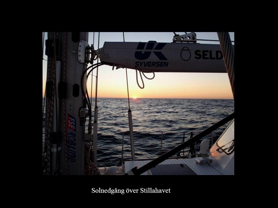 Solnedgång över Stillahavet