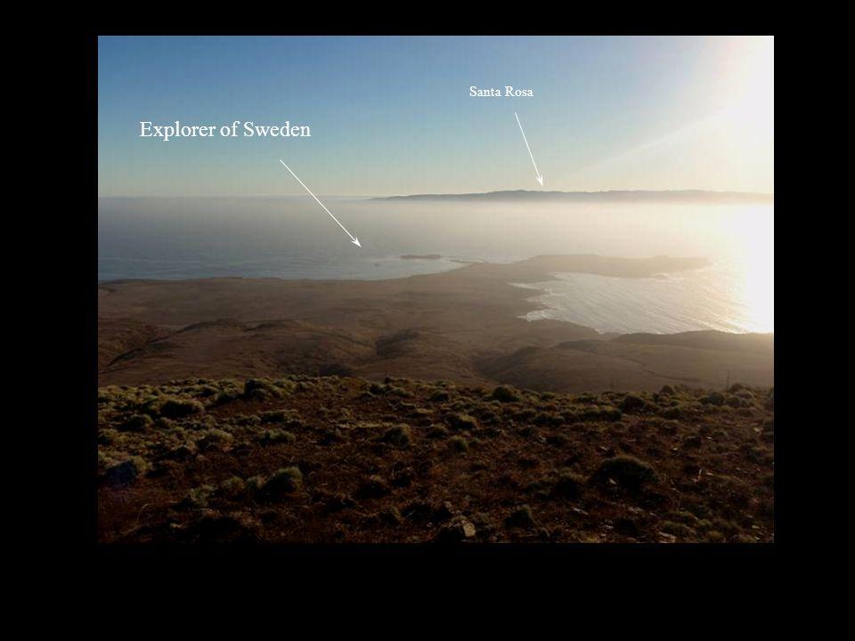 Explorer of Sweden Santa Rosa