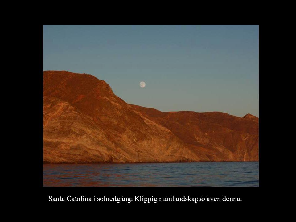 Santa Catalina i solnedgång. Klippig månlandskapsö även denna.