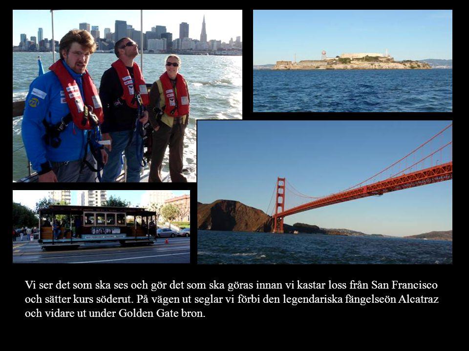 Vi ser det som ska ses och gör det som ska göras innan vi kastar loss från San Francisco och sätter kurs söderut.