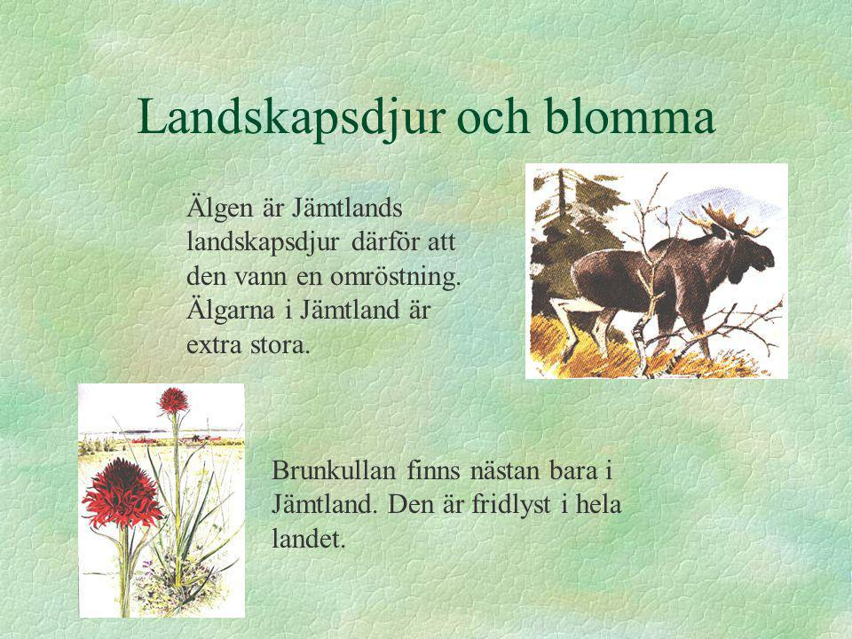 Landskapsdjur och blomma Brunkullan finns nästan bara i Jämtland. Den är fridlyst i hela landet. Älgen är Jämtlands landskapsdjur därför att den vann