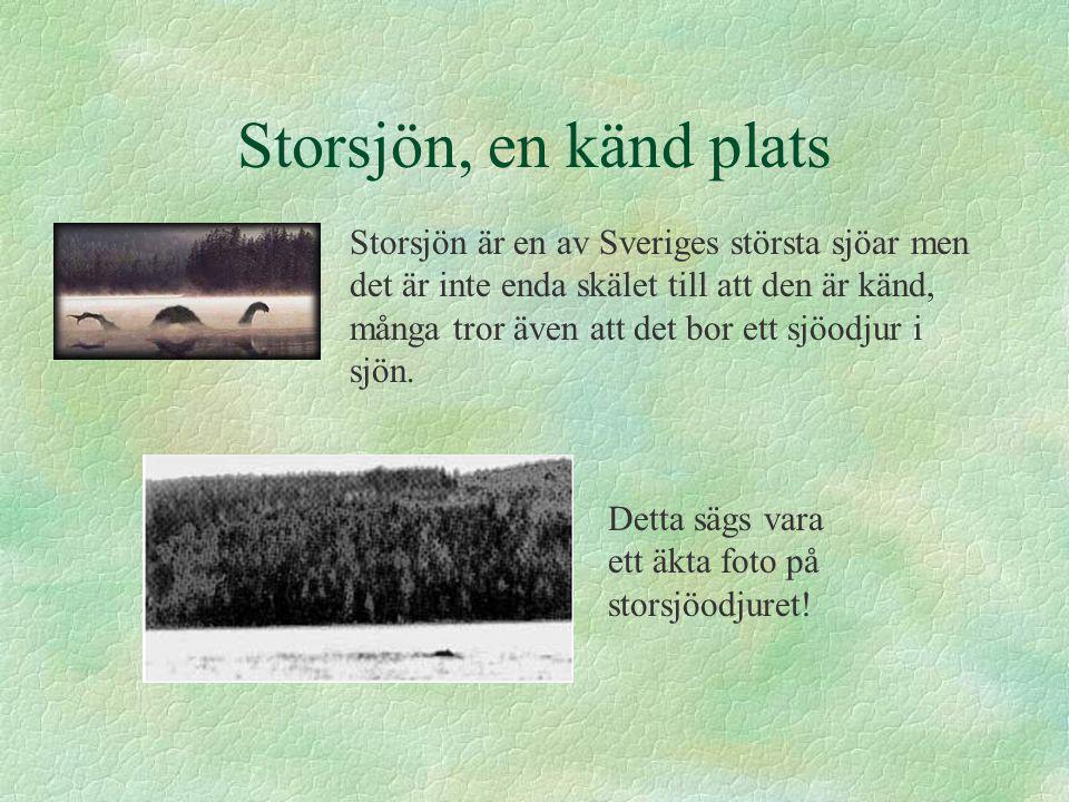 Storsjön, en känd plats Storsjön är en av Sveriges största sjöar men det är inte enda skälet till att den är känd, många tror även att det bor ett sjö