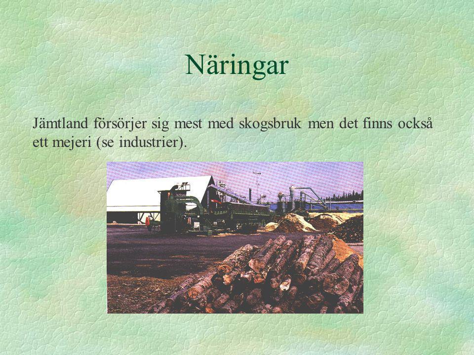 Näringar Jämtland försörjer sig mest med skogsbruk men det finns också ett mejeri (se industrier).