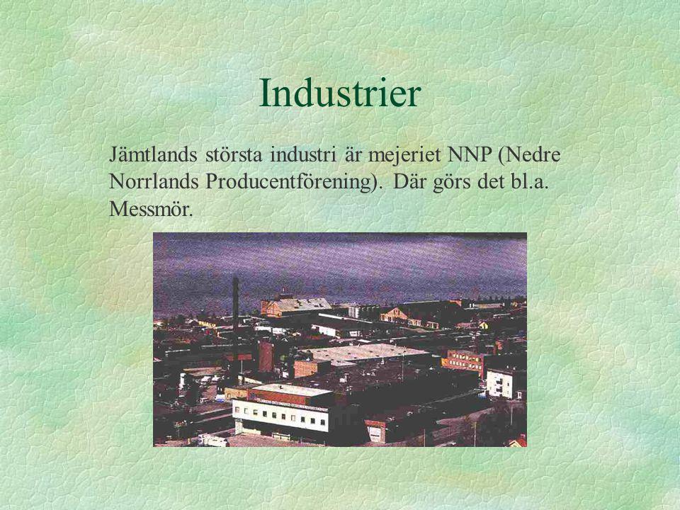 Industrier Jämtlands största industri är mejeriet NNP (Nedre Norrlands Producentförening). Där görs det bl.a. Messmör.