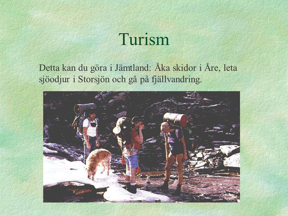 Turism Detta kan du göra i Jämtland: Åka skidor i Åre, leta sjöodjur i Storsjön och gå på fjällvandring.
