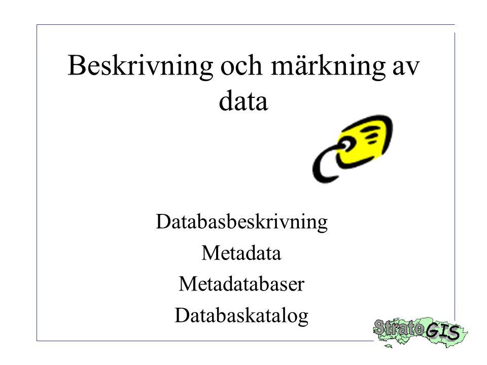 Beskrivning och märkning av data Databasbeskrivning Metadata Metadatabaser Databaskatalog