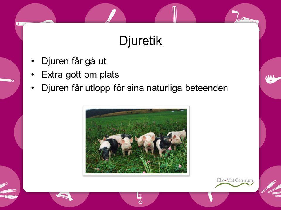Djuretik •Djuren får gå ut •Extra gott om plats •Djuren får utlopp för sina naturliga beteenden
