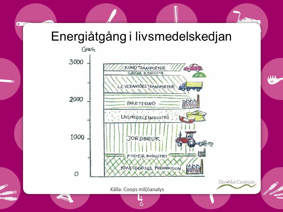 Energiåtgång i livsmedelskedjan Källa: Coops miljöanalys