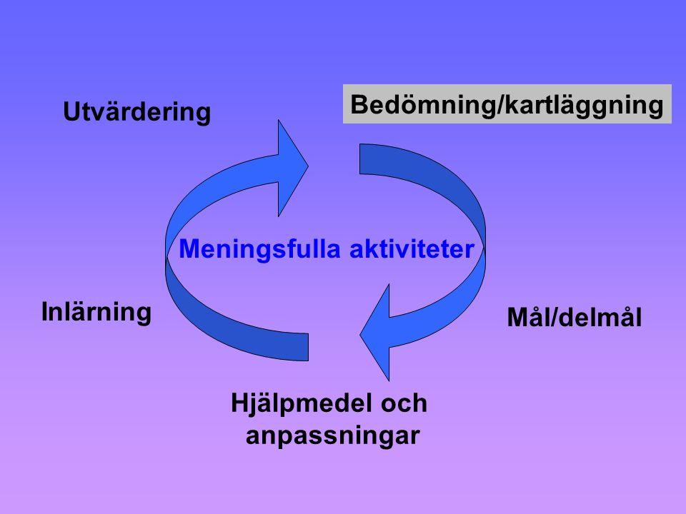 Bedömning/kartläggning Mål/delmål Hjälpmedel och anpassningar Inlärning Utvärdering Meningsfulla aktiviteter