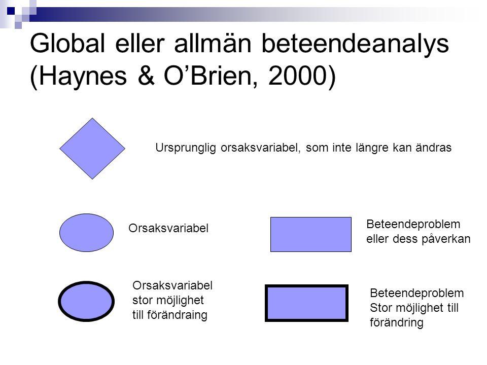 Global eller allmän beteendeanalys (Haynes & O'Brien, 2000) Ursprunglig orsaksvariabel, som inte längre kan ändras Orsaksvariabel Beteendeproblem eller dess påverkan Orsaksvariabel stor möjlighet till förändraing Beteendeproblem Stor möjlighet till förändring