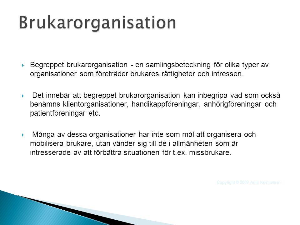  Begreppet brukarorganisation - en samlingsbeteckning för olika typer av organisationer som företräder brukares rättigheter och intressen.  Det inne
