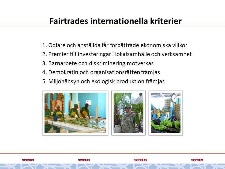 Fairtrades internationella kriterier 1. Odlare och anställda får förbättrade ekonomiska villkor 2. Premier till investeringar i lokalsamhälle och verk