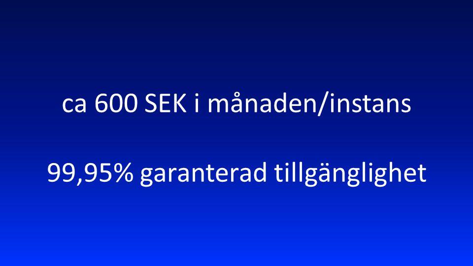 ca 600 SEK i månaden/instans 99,95% garanterad tillgänglighet