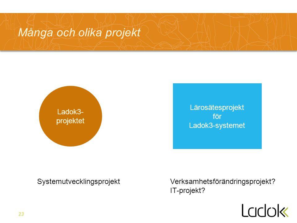 23 Många och olika projekt Ladok3- projektet Lärosätesprojekt för Ladok3-systemet SystemutvecklingsprojektVerksamhetsförändringsprojekt? IT-projekt?