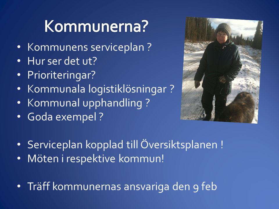 • Kommunens serviceplan . • Hur ser det ut. • Prioriteringar.