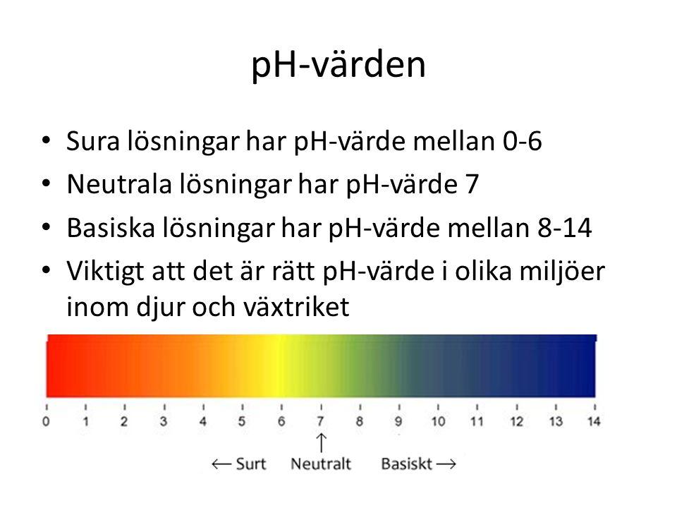 pH-värden • Sura lösningar har pH-värde mellan 0-6 • Neutrala lösningar har pH-värde 7 • Basiska lösningar har pH-värde mellan 8-14 • Viktigt att det