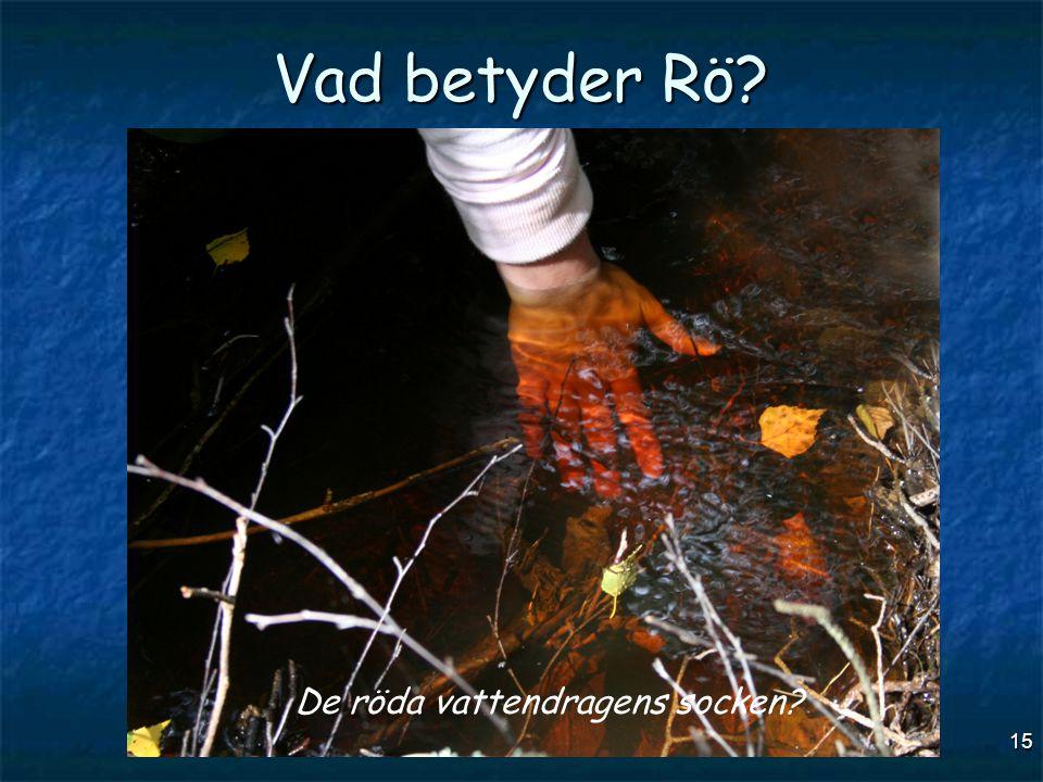 15 Vad betyder Rö? De röda vattendragens socken?